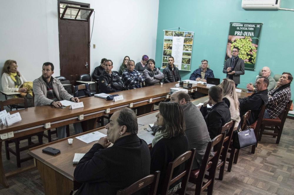 IBRAOLIVA participa da reunião da Câmara Setorial das Oliveiras/RS