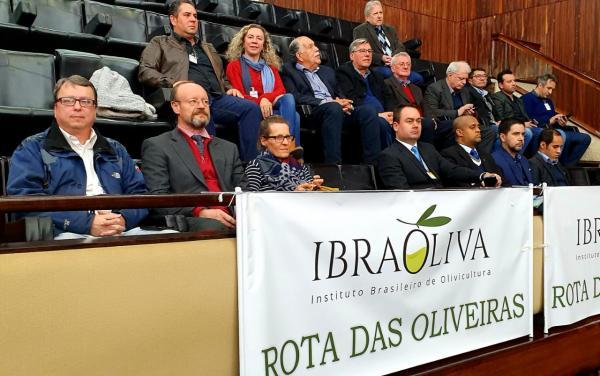 ROTA DAS OLIVEIRAS