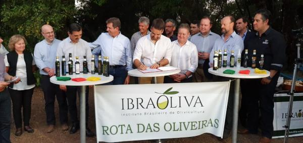 Governador Eduardo Leite sanciona Lei da ROTA DAS OLIVEIRAS