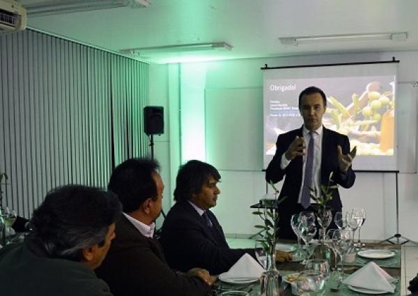 Senac-RS, Sebrae-RS e IBRAOLIVA debatem parceria para incentivar a cultura do azeite gaúcho